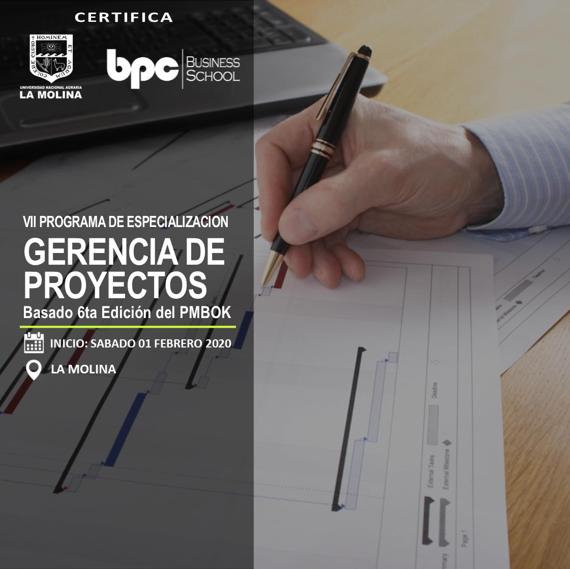 VII PDE en Gerencia de Proyectos PMBOK (Estado de Emergencia)