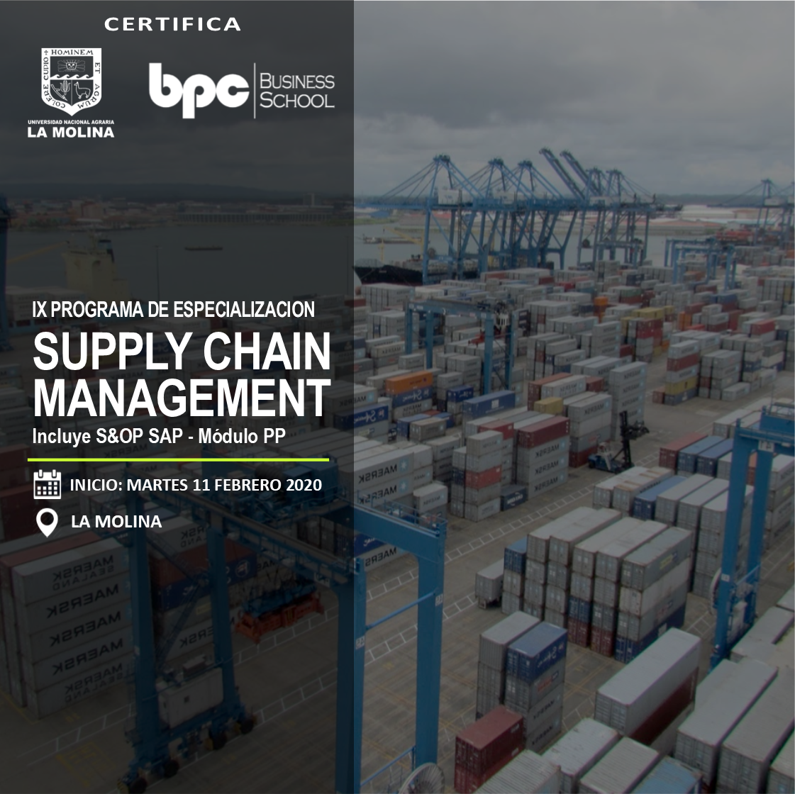 IX PDE en Supply Chain Management (Estado de Emergencia)